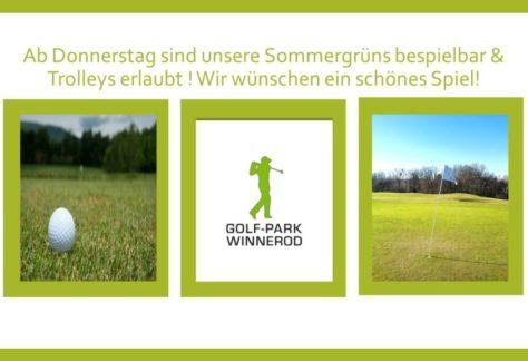 Sommergrüns & Trolleys ab dem 25.02.2021!